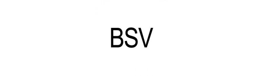Skútrové remene značky BSV